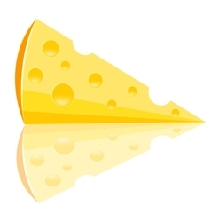 Piece of the cheese vector image vector image