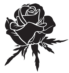 Rose bloom vector