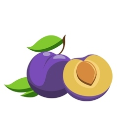 Plum whole and pieces vector image