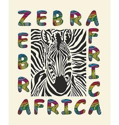 Zebra africa background vector