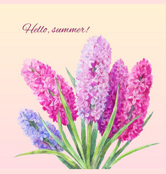 Watercolor bouquet of hyacinths vector