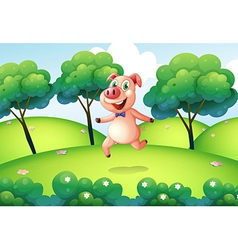 A pig at the hilltop vector image vector image