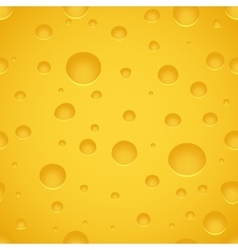 Cheese Texture Pattern vector image