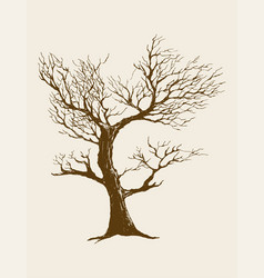 Dried tree vector