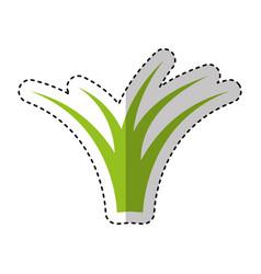 Garden grass isolated icon vector