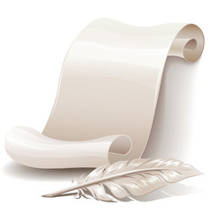Paper scroll with feather vector