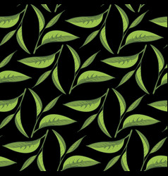 Tea leaves pattern with black backdrop vector