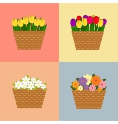 Collection of spring and summer colorful flowers vector image vector image