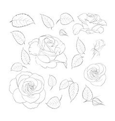 Set of vintage flowers vector image vector image