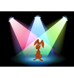 A rabbit show on stage vector