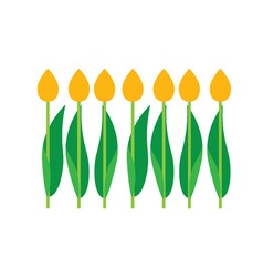 Set of tulips bouquet vector