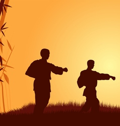 Three men demonstrate karate on a background a vector