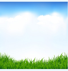blue sky and greeen grass vector image vector image
