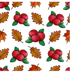 seamless pattern with cranberries vector image