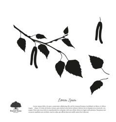 Black silhouette of birch branch vector