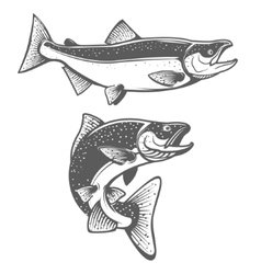 Salmon silhouettes fresh seafood salmon fishing vector