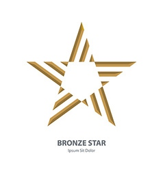 Bronze 3d star business international award vector