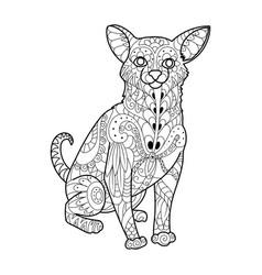 chihuahua dog coloring book vector image vector image