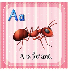 Flashcard a is for ant vector