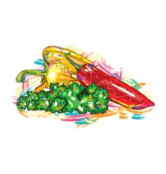 vegetables with colorful splashes vector image vector image