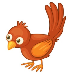 Red bird on white vector
