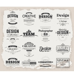 Retro design creative vintage labels vector