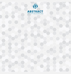 abstract hexagon pattern white and gray color vector image vector image