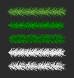 christmas pine tree branches vector image