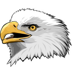 Eagle head 6 vector