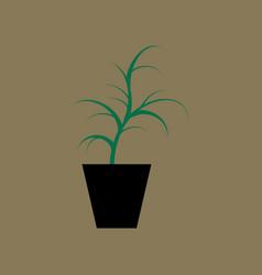 Icon in flat design flower in pot aloe vector
