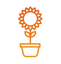Potted sunflower natural plant petal decoration vector