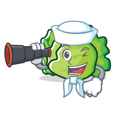 Sailor with binocular lettuce character cartoon vector