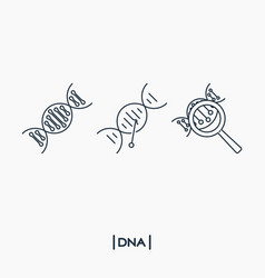 dna icons vector image vector image