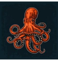 Octopus Sea Monster vector image