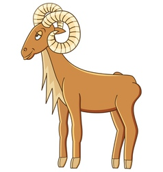 urial vector image