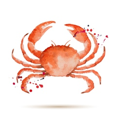 Watercolor crab vector
