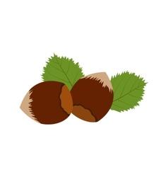 Hazelnut icon flat vector
