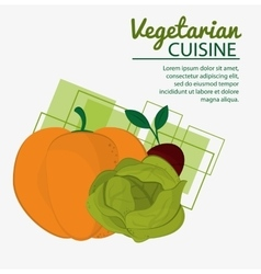 Pumkin lettuce beet fresh natural vegetarian vector