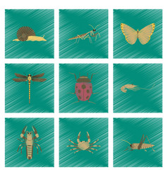 assembly flat shading style bug snail vector image vector image