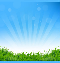 Blue sunburst and grass background vector