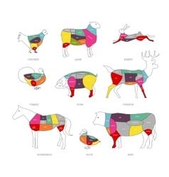 Butcher shop concept meat vector
