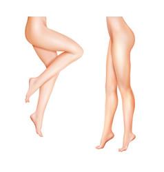 Female legs realistic vector