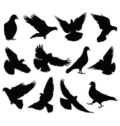 Flying dove silhouettes isolated pigeons vector