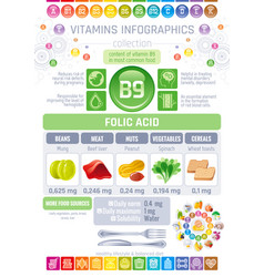 Folic acid vitamin b9 rich food icons healthy vector