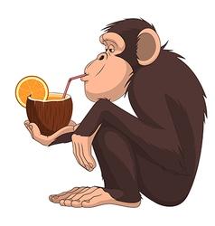 chimpanzee 50 vector image vector image