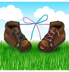 Two shoes with laces on the green grass vector