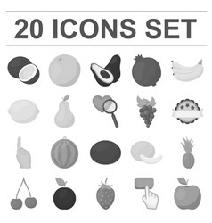 Different fruits monochrome icons in set vector