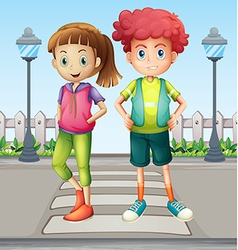 Kids at the pedestrian lane vector image vector image