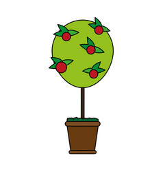 Plant in pot icon image vector