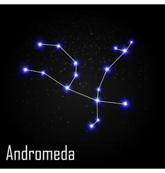 Andromeda Constellation with Beautiful Bright vector image vector image